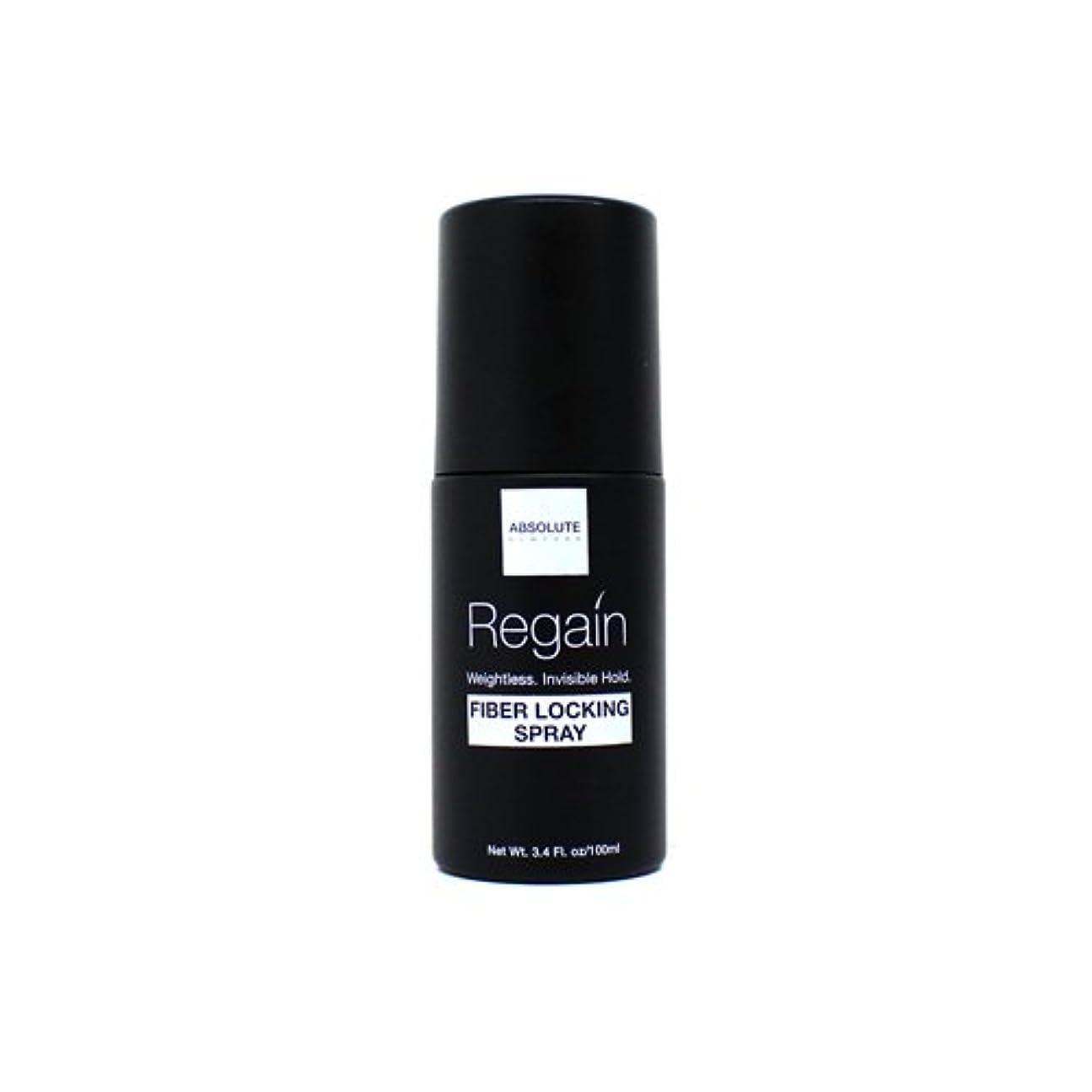 折る投獄入力Absolute Hair Fiber Locking Hair Spray (並行輸入品)