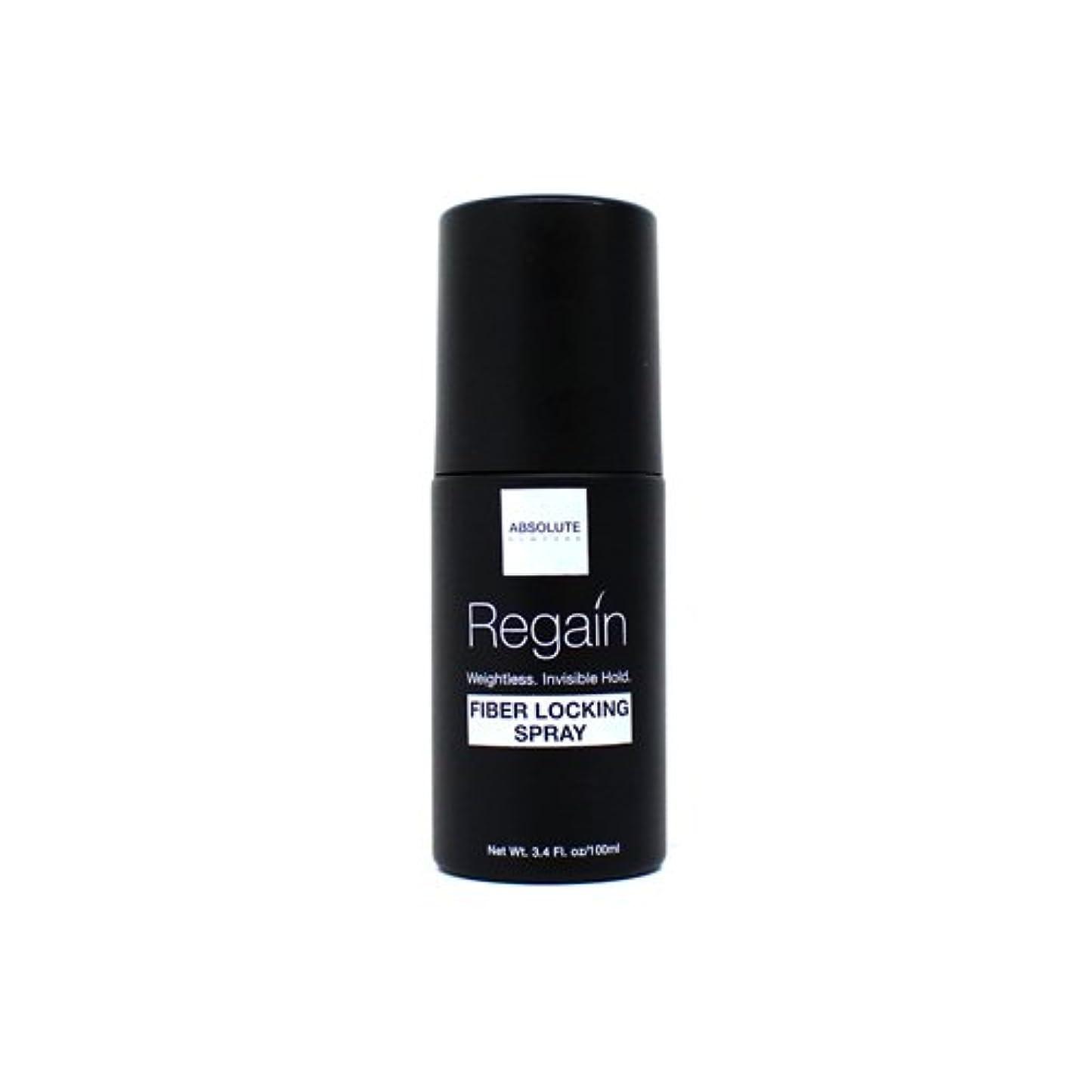 ライナーインストール弾性Absolute Hair Fiber Locking Hair Spray (並行輸入品)