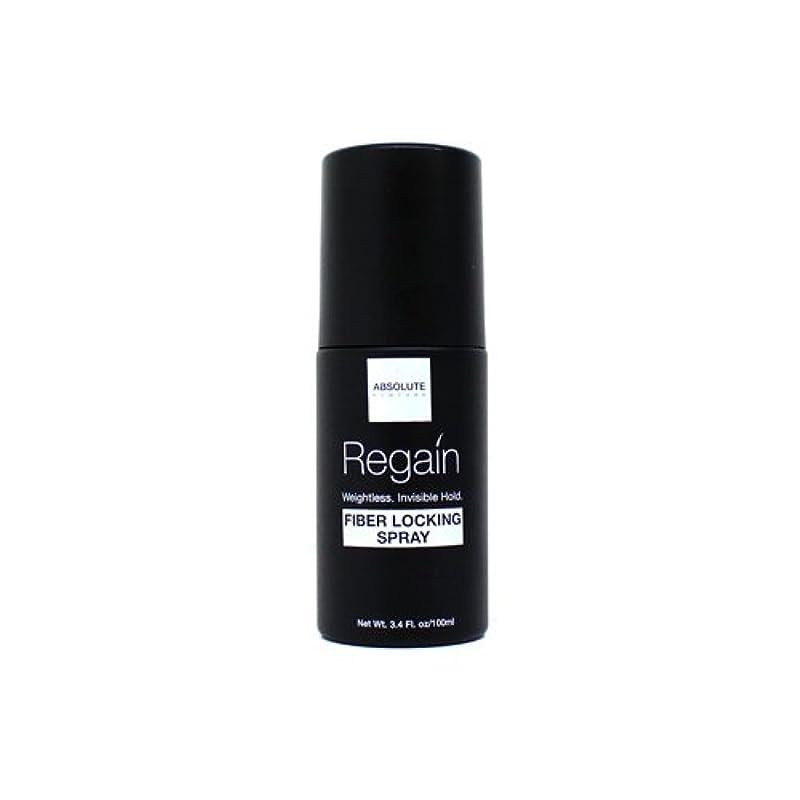 老朽化した滑り台特性(6 Pack) Absolute Hair Fiber Locking Hair Spray (並行輸入品)