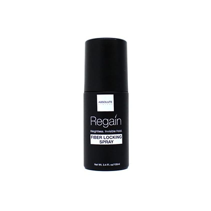 動物園運河舞い上がるAbsolute Hair Fiber Locking Hair Spray (並行輸入品)