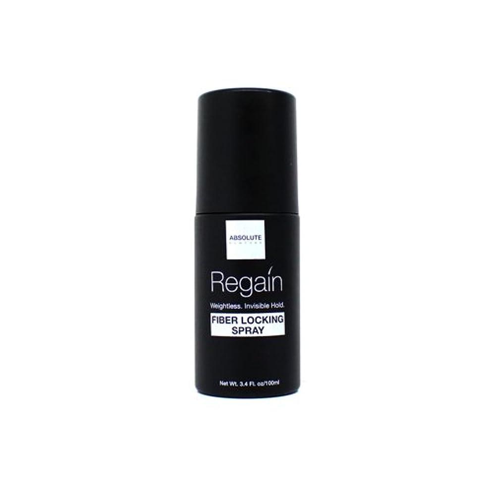 有彩色の危険な敏感な(6 Pack) Absolute Hair Fiber Locking Hair Spray (並行輸入品)