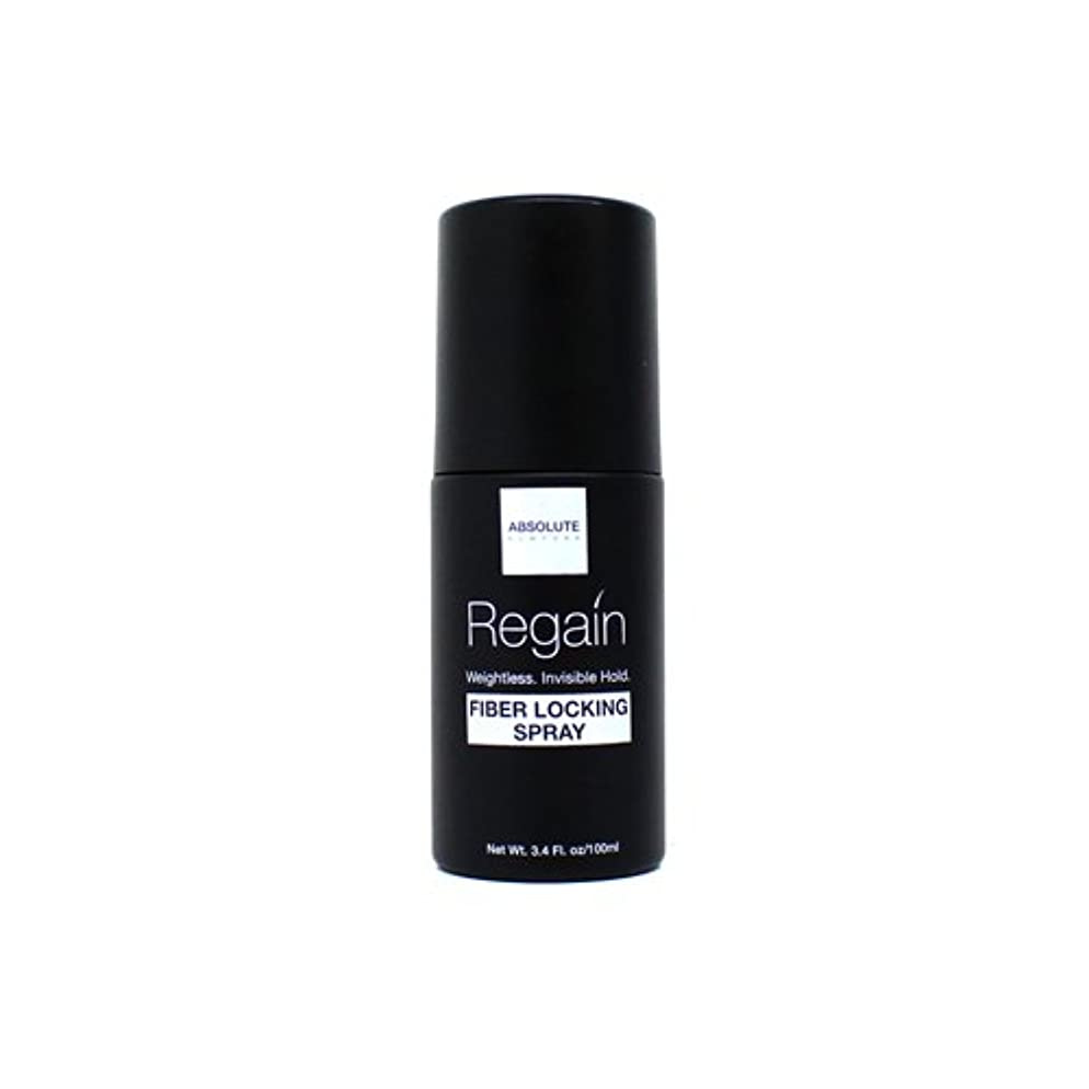 輝度単に露Absolute Hair Fiber Locking Hair Spray (並行輸入品)