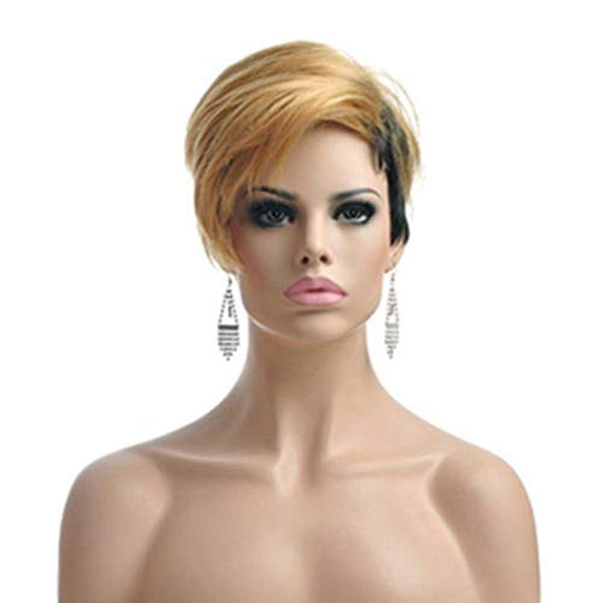 ホイットニーカプセル名誉ウィッグ - フルウィッグ - コスプレウィッグ- ヘア- ウィッグ - 人格のファッション短い直線高温シルクのかつら自然のソフトハロウィンボールロールプレイ25センチメートル多色 成人女性に適しています (色 : 褐色...