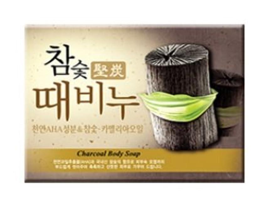 袋ハンカチパン屋堅炭ソープ 100g / Charcoal Body Soap [並行輸入品]