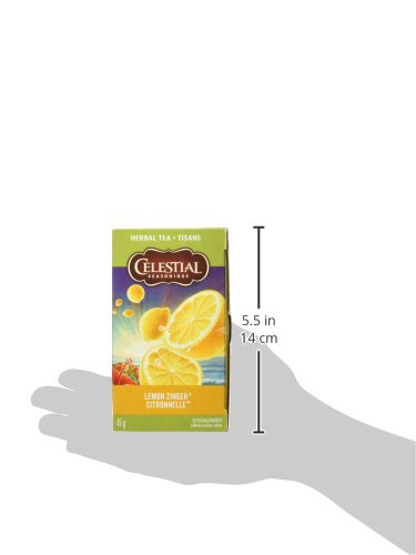 レモンジンガー 20個