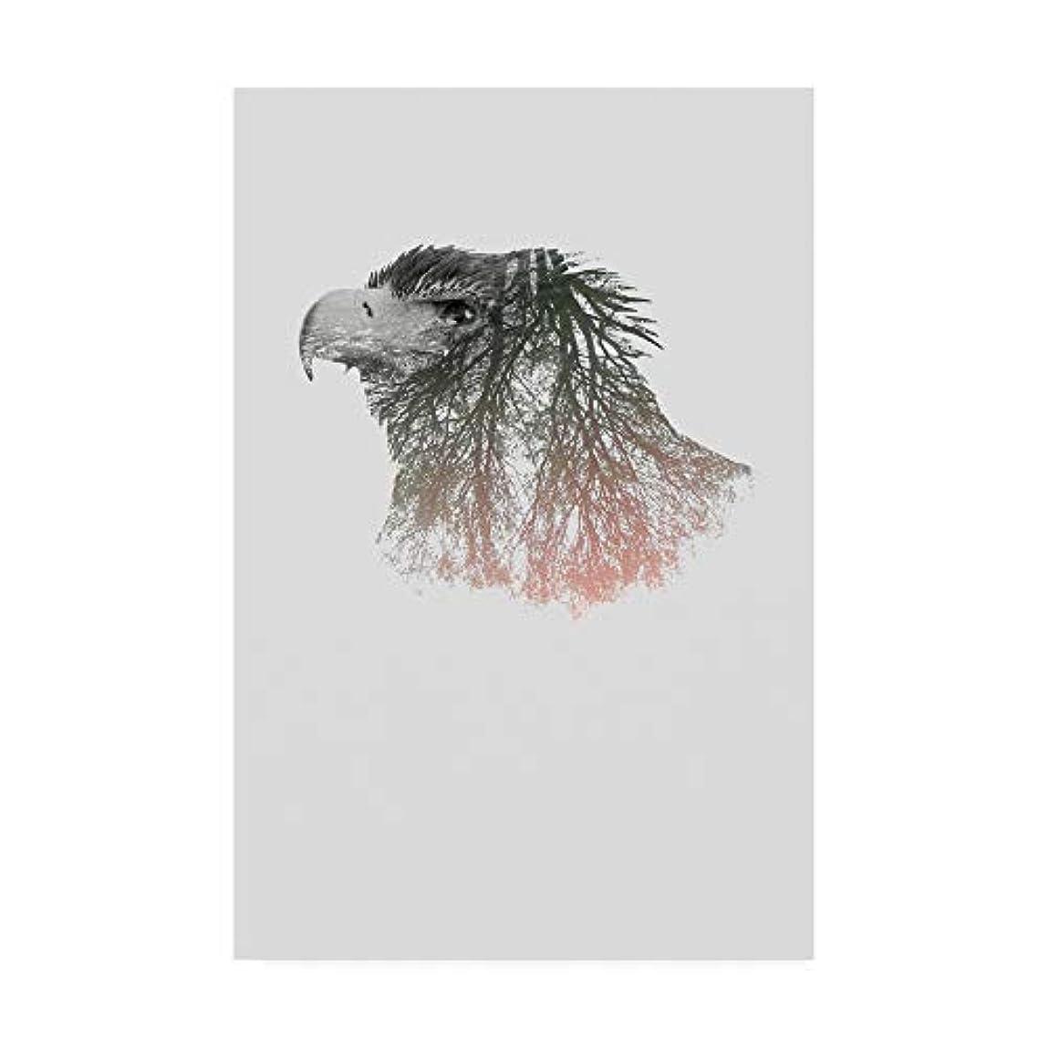 死傷者トリップ頑丈Trademark Fine Art IC01758-C1219GG Eye of The Forest I Clean Nature製 12x19 複数 12x19 IC01758-C1219GG