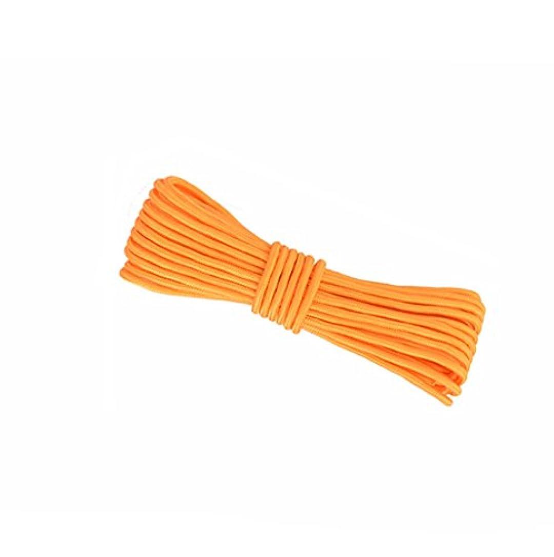 毎週喪コマース登山ロープ、黄色10M、20M、50M、100M、ロッククライミングロープ、直径8mm / 10mmアウトドア探検救助ロープ、高強度ナイロンロープ安全ロープ (色 : Diameter-10mm, サイズ さいず : 100M)