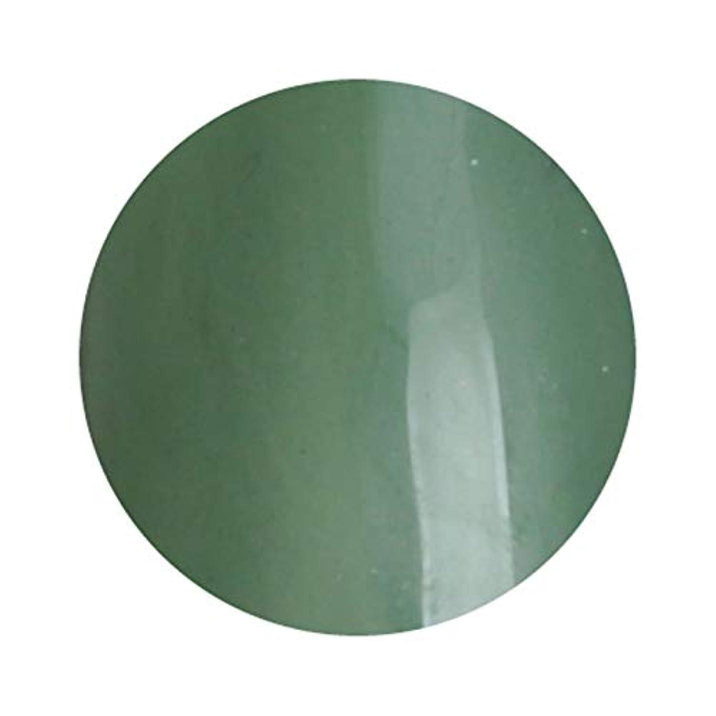 反響する指定する決定的T-GEL COLLECTION ティージェルコレクション カラージェル D234 クリアカーキ 4ml