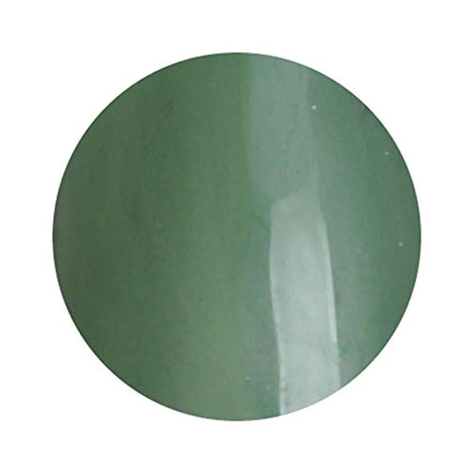 夕暮れラッシュ約T-GEL COLLECTION ティージェルコレクション カラージェル D234 クリアカーキ 4ml