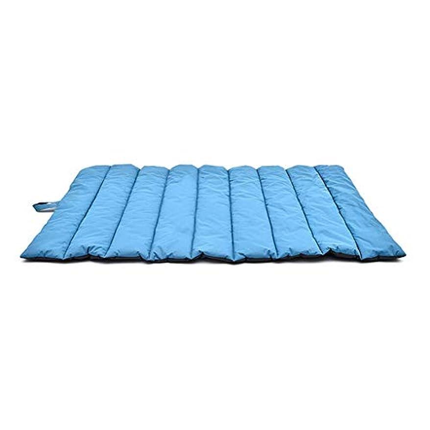 悪意のある対角線軽蔑屋外犬のペットベッド、非粘着性のペット犬のパッドをきれいにするのは簡単です (色 : 青, サイズ さいず : L110*W68CM)