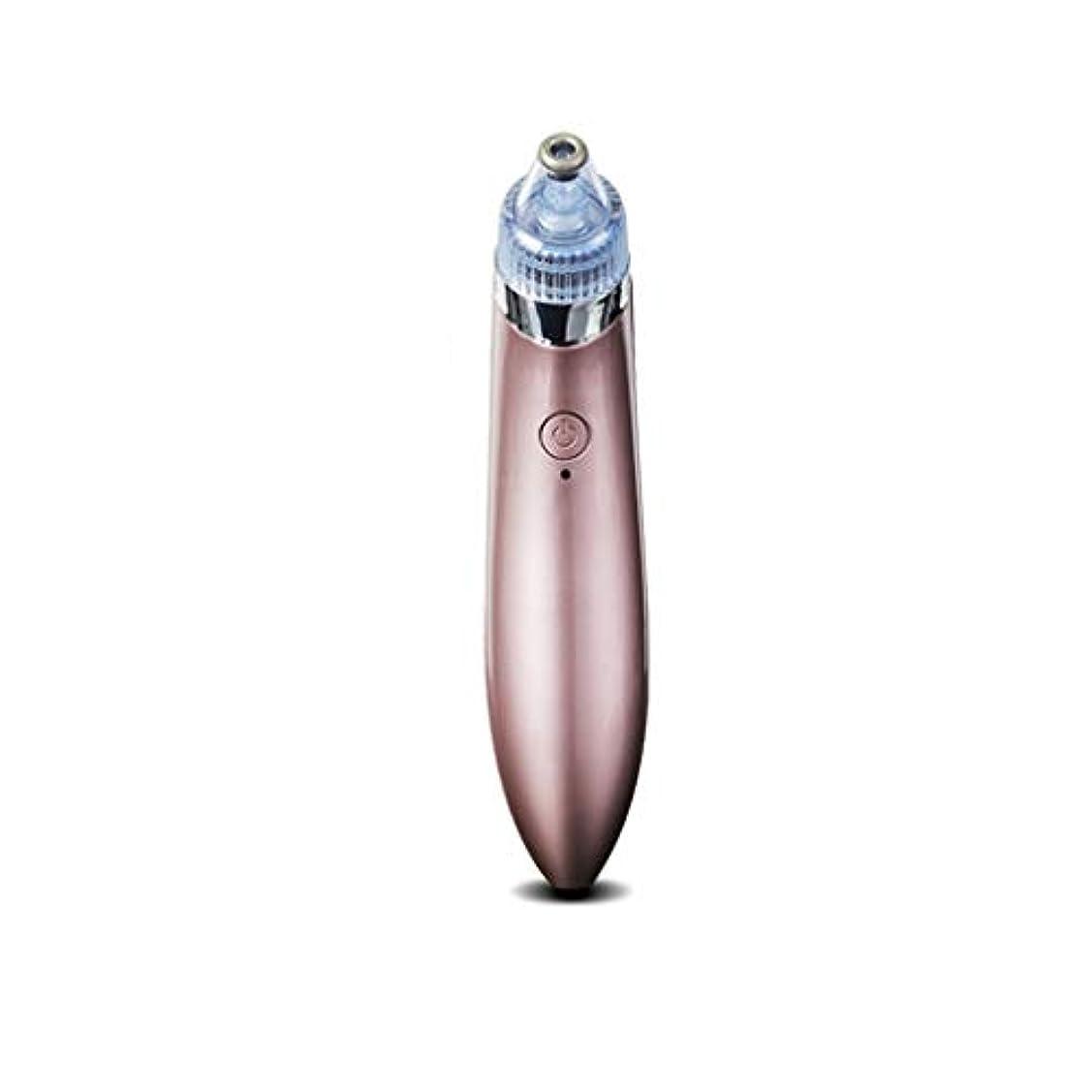 予防接種するキノコ名詞ホワイトヘッドにきびにきび輸出機へのusb電気にきび楽器電子クリーニング顔面ディープクレンジング (Color : Pink)