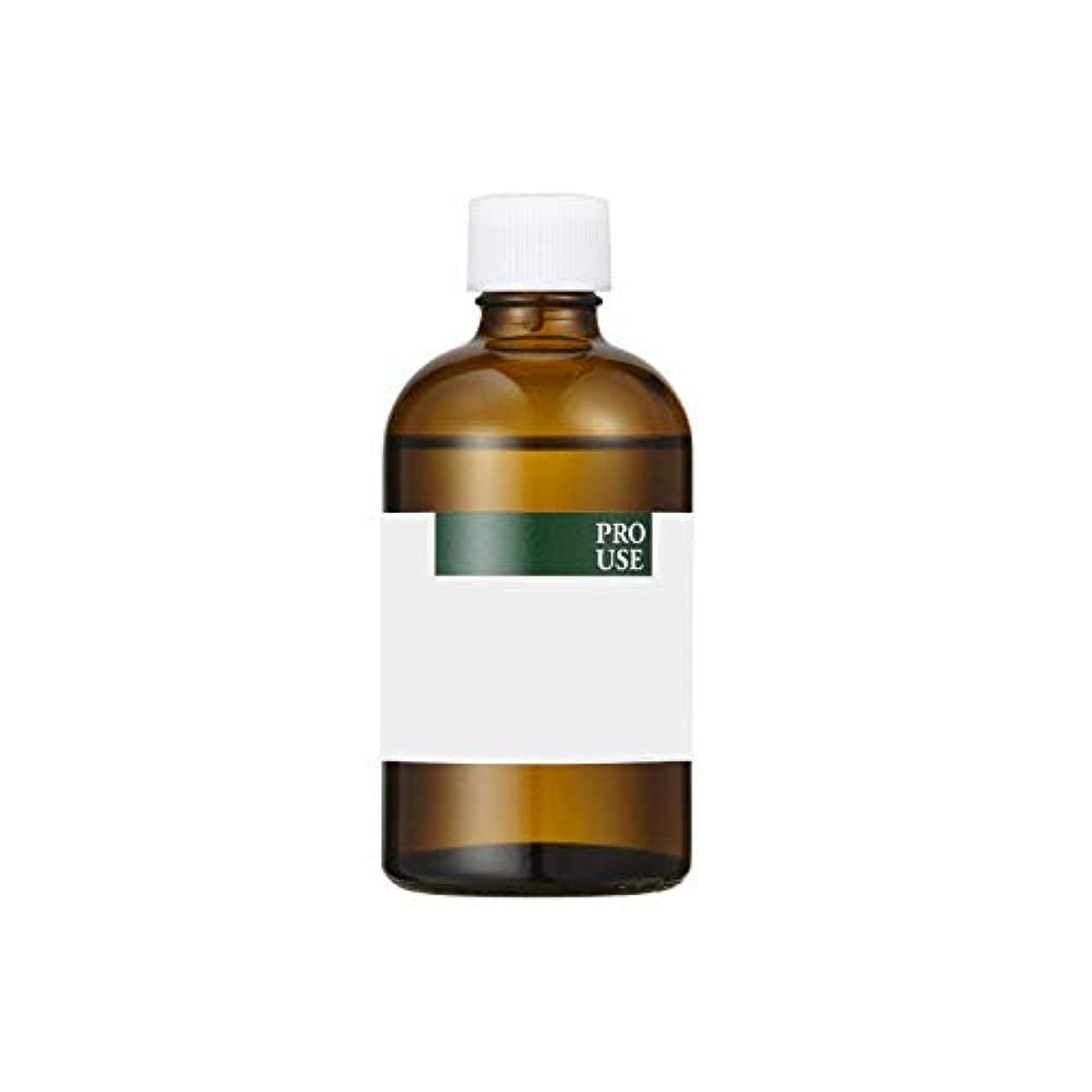 味付けキャンドル太陽生活の木 ブレンド精油 ライミーバカンス 100ml