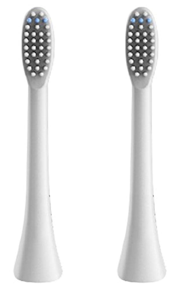 レコーダーテラス安定(正規品)InfinitusValue スマートトラッキング電動歯ブラシ専用替えブラシ レギュラーサイズ 2本組 ホワイト IVHB01WBR2