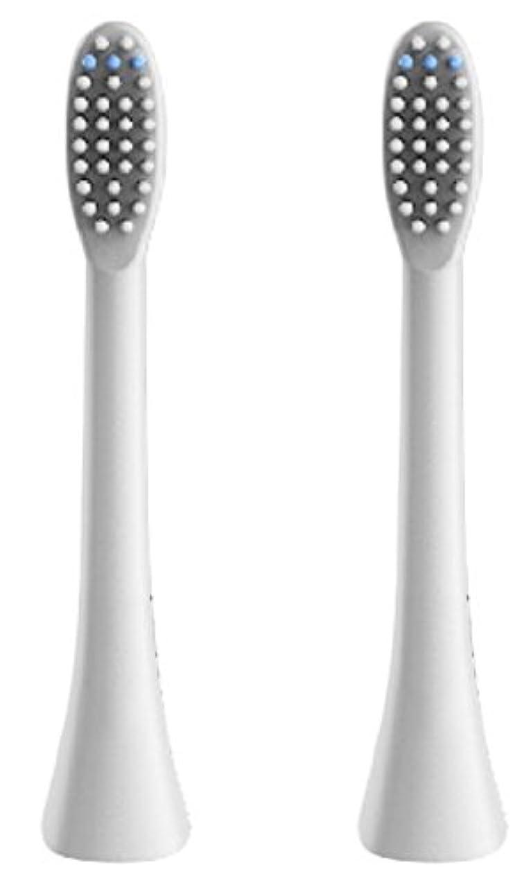 同情提供された消費者(正規品)InfinitusValue スマートトラッキング電動歯ブラシ専用替えブラシ レギュラーサイズ 2本組 ホワイト IVHB01WBR2