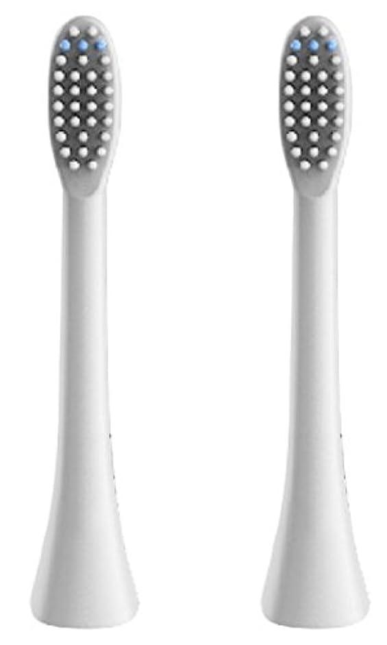 理容室眩惑するフェザー(正規品)InfinitusValue スマートトラッキング電動歯ブラシ専用替えブラシ レギュラーサイズ 2本組 ホワイト IVHB01WBR2