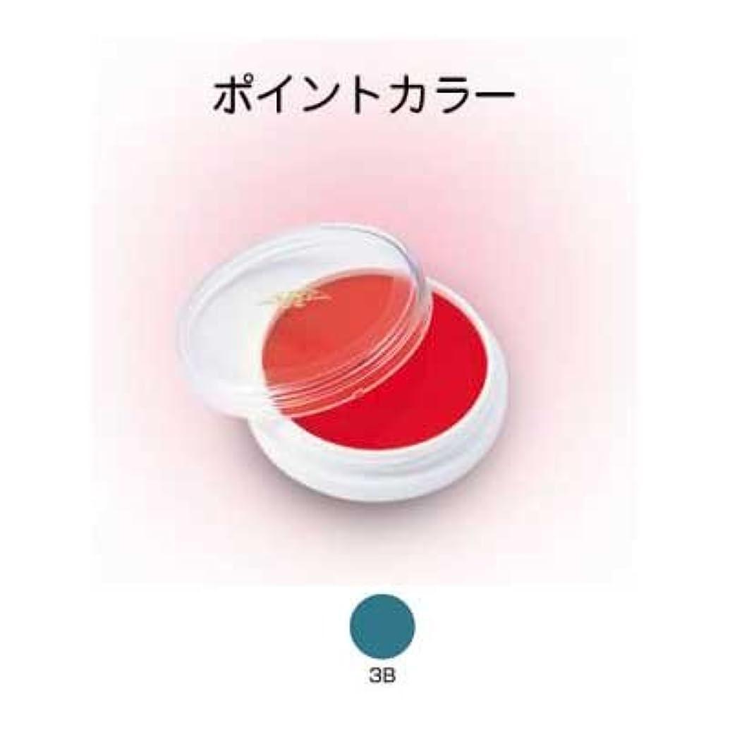 不一致トラフうっかりライニングカラー 4g 3B【三善】