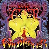 Wildflower [Analog]