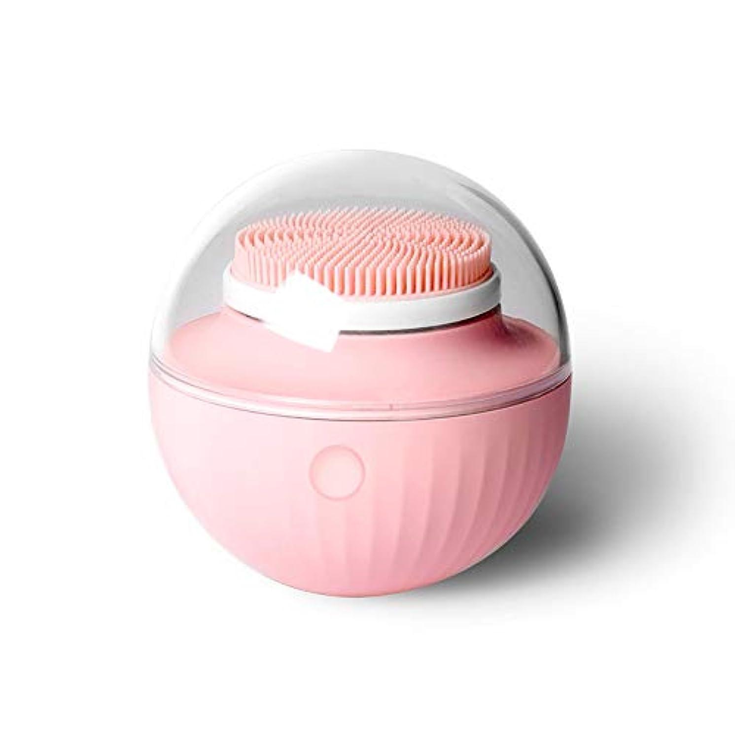 首尾一貫した楽しませるパテパフ洗浄器具ポータブル充電超音波USBシリコン電動洗顔器ディープクレンジング顔 (ピンク)