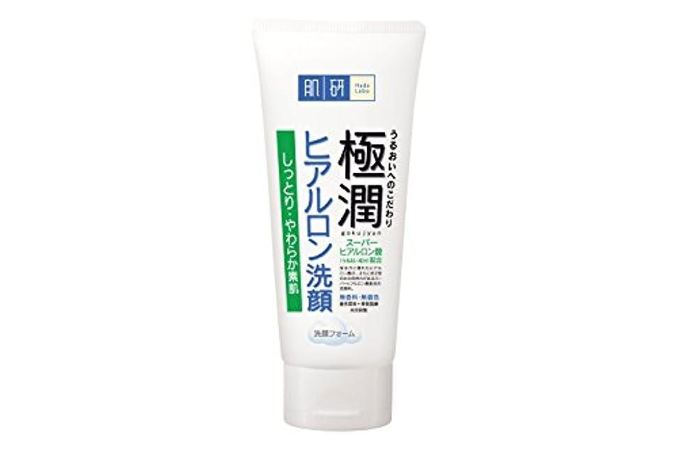 電池上回るロック肌研(ハダラボ) 極潤 ヒアルロン 洗顔フォーム 100g [並行輸入品]