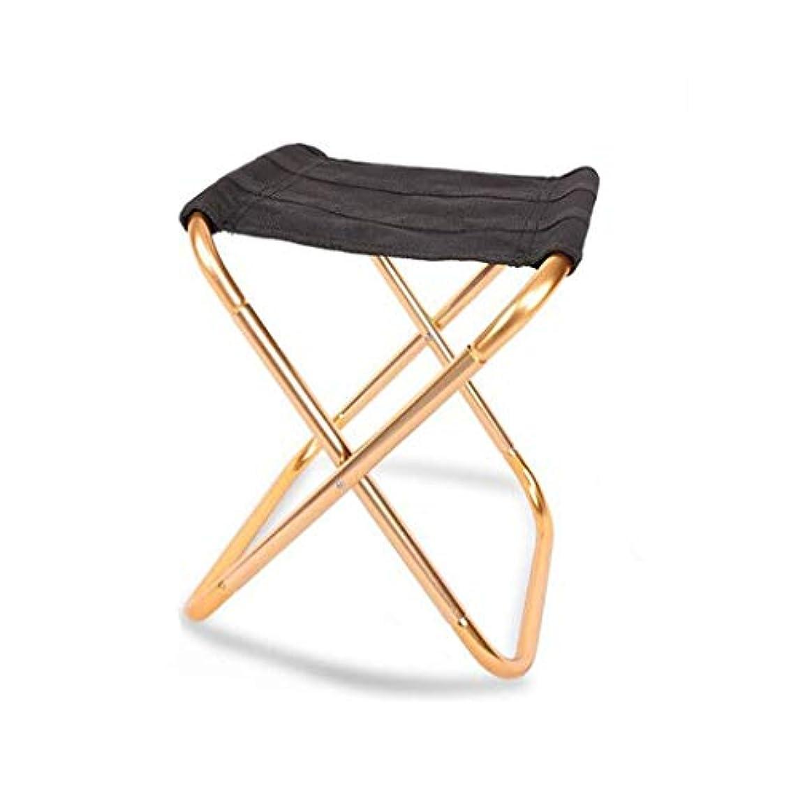 既婚征服する動かすNEVY ポータブル アウトドア 折りたたみ 椅子 アルミ合金 ブラケット コンパクト 超軽量 ミニスツール キャンプ用 釣り、2色 (色 : ゴールド)
