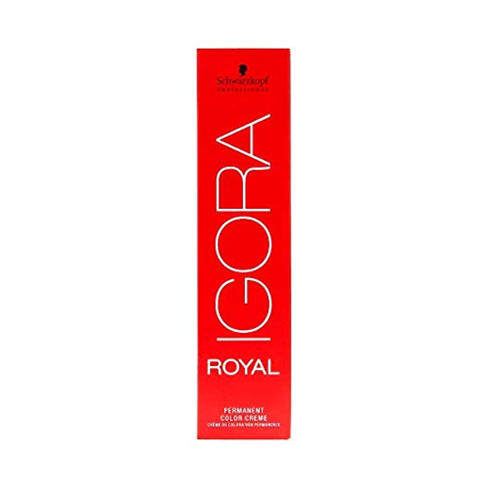 最高キウイ合併シュワルツコフ IGORA ロイヤル6-00パーマネントカラークリーム60ml[海外直送品] [並行輸入品]