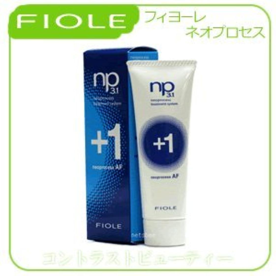 人気のこれまで最初に【X5個セット】 フィヨーレ NP3.1 ネオプロセス AFプラス1 100g FIOLE ネオプロセス