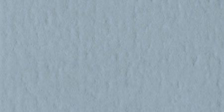 Bazzill (バジル) オレンジピール テクスチャ— カードストック オレンジピール - 8.5 x 11 - Mitchell 304093
