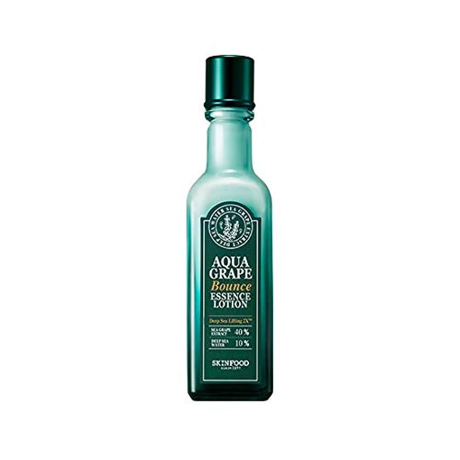 失望メンダシティ化粧Skinfood アクアグレープバウンスエッセンスローション/Aqua Grape Bounce Essence Lotion 120ml [並行輸入品]
