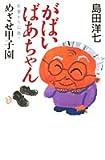 がばいばあちゃん佐賀から広島へ めざせ甲子園