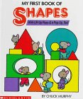 My First Book of Shapes: With Lift-Up Flaps & A Pop-Up, Too!