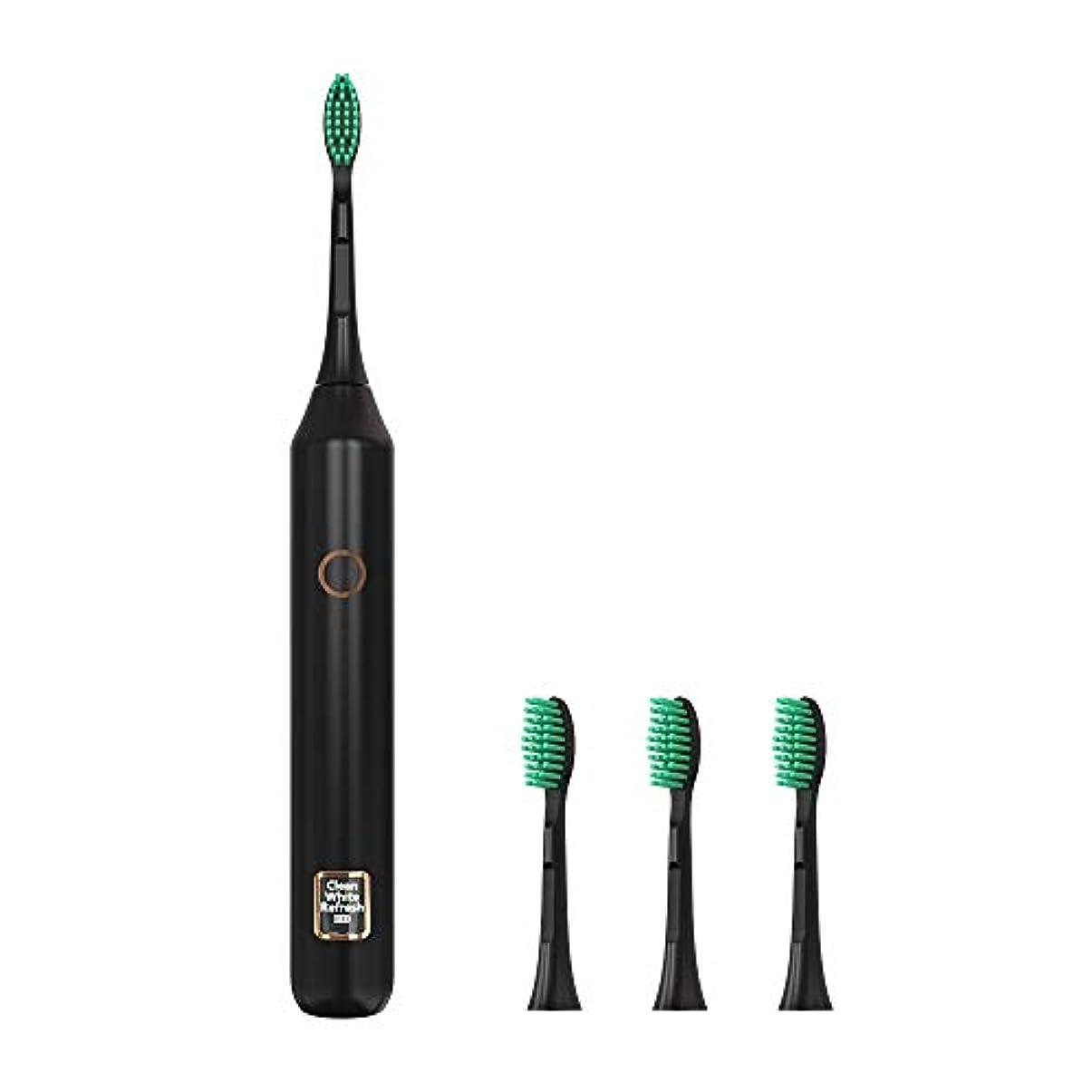 ホラー夜間代表するソニックウェーブ電動歯ブラシUSB充電式歯ホワイトニングブラシ3モードIPX7防水歯ブラシ2分タイマー,黒,4heads