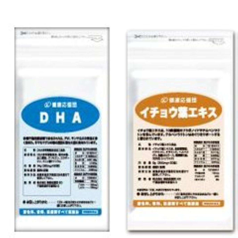 破壊する温かい呼び起こす(お徳用12か月分)サラサラ巡りセット DHA + イチョウ葉エキス 12袋&12袋セット(DHA?EPA?イチョウ葉?ビタミンC?ビタミンE?ビタミンP配合)