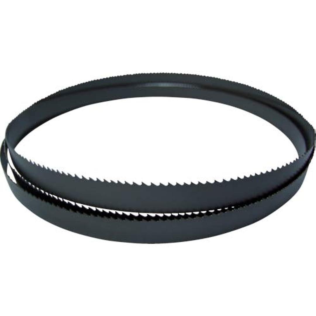 ええクモ印刷するBAHCO(バーコ) Cutoff Bimetal Bandsaw カットオフバンドソー替刃 (鉄?ステンレス兼用) 異系材向け 3900-27-0.9-PF-5/8-2750