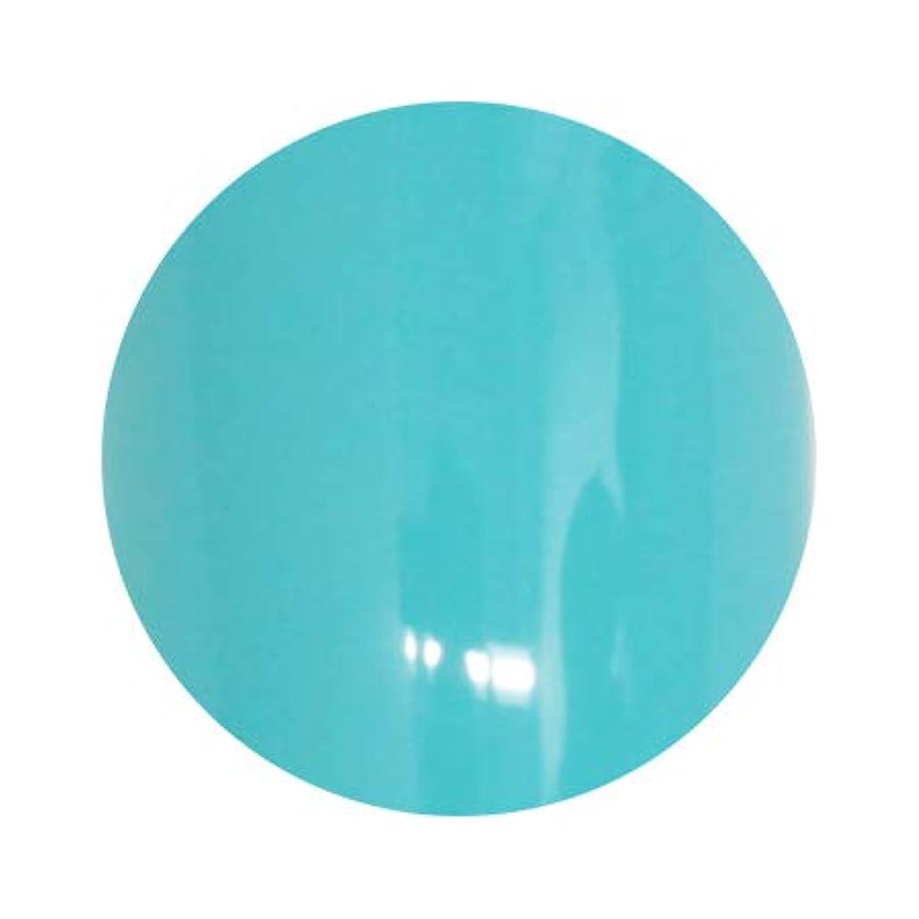 科学者賃金地域LUCU GEL ルクジェル カラー BLM13 ラリマー 3.5g