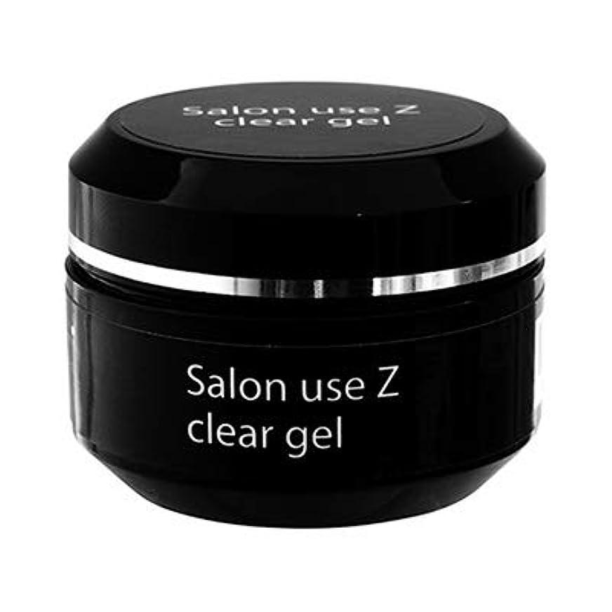 狂人専門用語再生的Salon use Z クリアジェル 15g