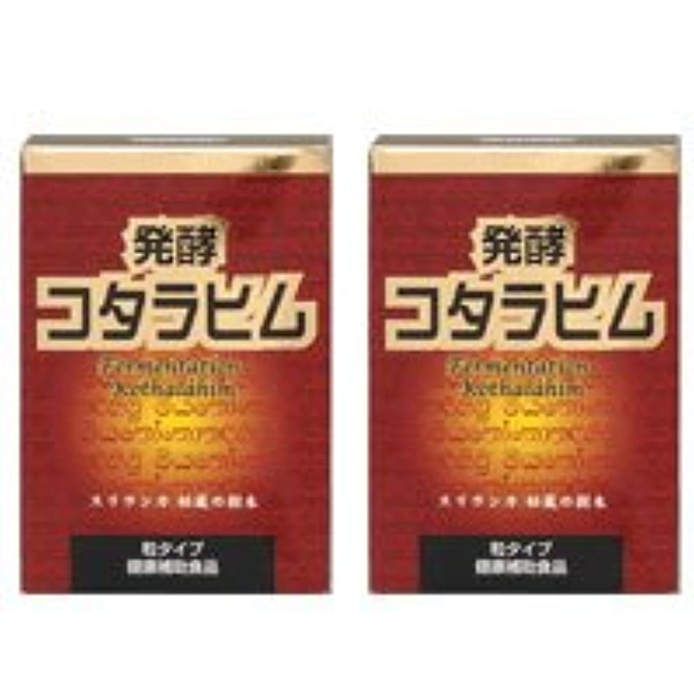 バイオリン用語集アーチ発酵コタラヒム2個セット【糖を変化させるコタラヒム】