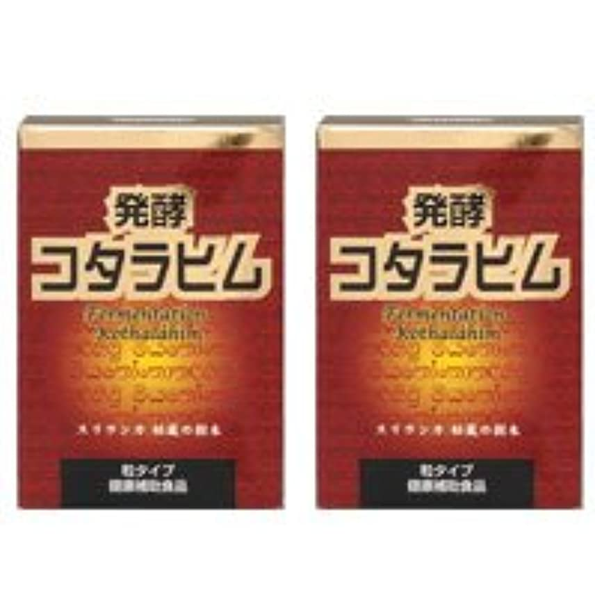 つまらないクリック威信発酵コタラヒム2個セット【糖を変化させるコタラヒム】