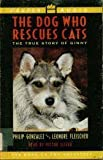 Dog Who Rescues Cats