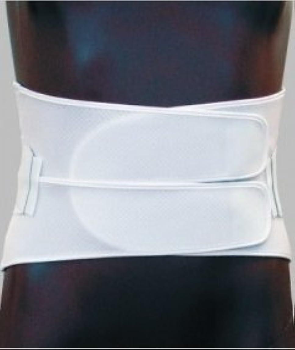ダイヤサポートⅢ型 NE-573 Lサイズ(適用範囲)80cm~90cm (日本衛材)(骨盤固定用ベルト,腰部固定帯,二重固定式,伸縮)