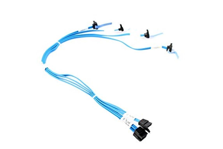 ブラインド喜劇相談する新しい純正Dell PowerEdge t110 IIブルー4ドロップHDD 2 SATAケーブルj07y2 0j07y2 cn-0j07y2