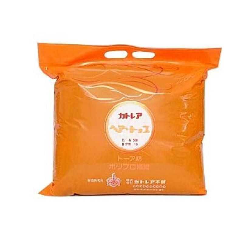 危険チーズ平らにするカトレア ヘアトップ500タイプ 1B自然色 500g
