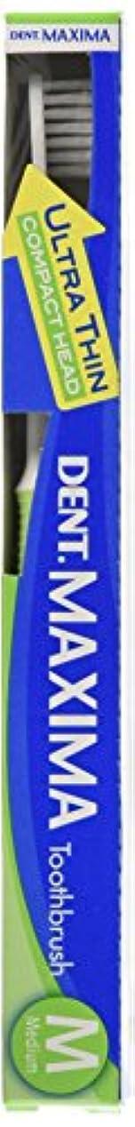 酸化する示す突き出すライオン DENT マキシマ M(ミディアム)