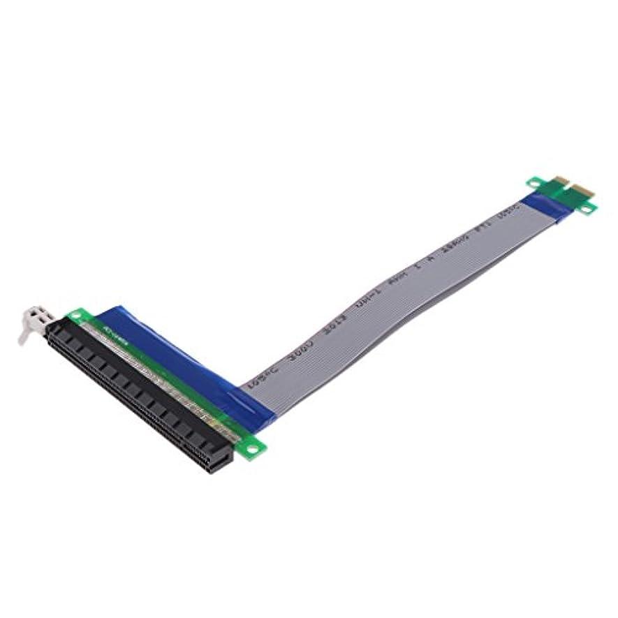 過半数ミュージカル不公平Fenteer PCI-E 1x~16xライザーケーブル リボン エクステンダー カード アダプター ABS +銅線