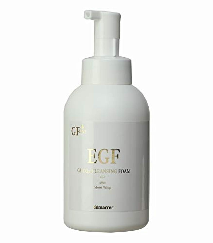ビンペグヘロインデマレ GF炭酸洗顔フォーム 500ml