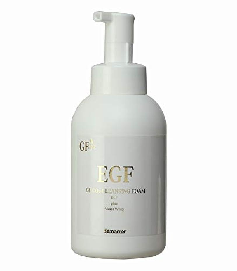 ファイアル連続的ランダムデマレ GF炭酸洗顔フォーム 500ml