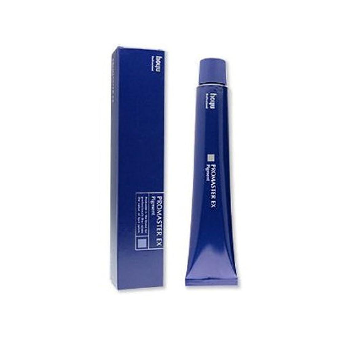 お香要件改修するホーユー プロマスターEX ピグメント V-6p 80g [医薬部外品]