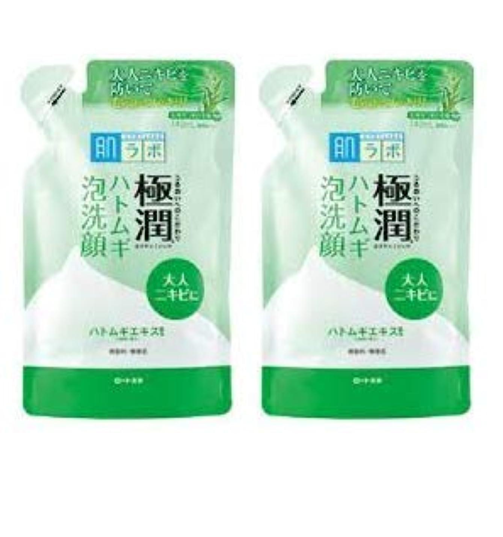 【2個まとめ買い】肌ラボ 極潤 毛穴洗浄 大人ニキビ予防 ハトムギ泡洗顔 詰替用 140mL
