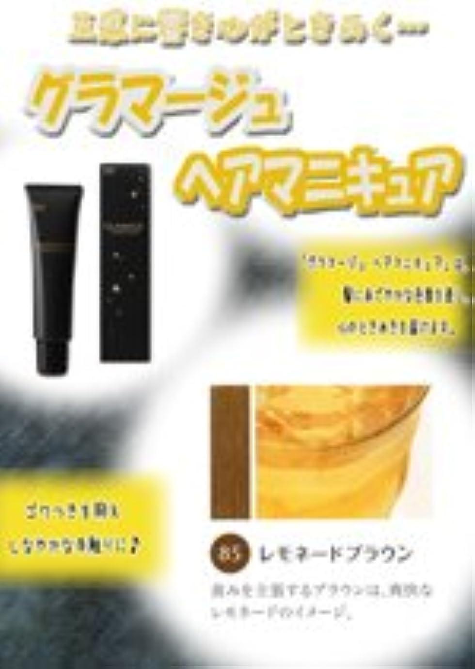 チョップ洗剤歯科のHOYU ホーユー グラマージュ ヘアマニキュア 85 レモネードブラウン 150g 【ブラウン系】