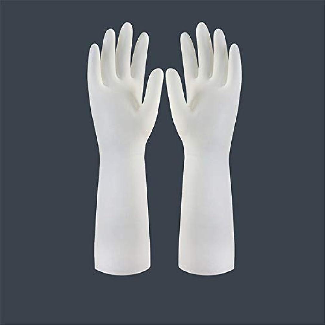 最小体細胞支給BTXXYJP キッチン用手袋 手袋 食器洗い 作業 炊事 食器洗い 掃除 園芸 洗車 防水 防油 手袋 (Color : Long-1 pair, Size : L)