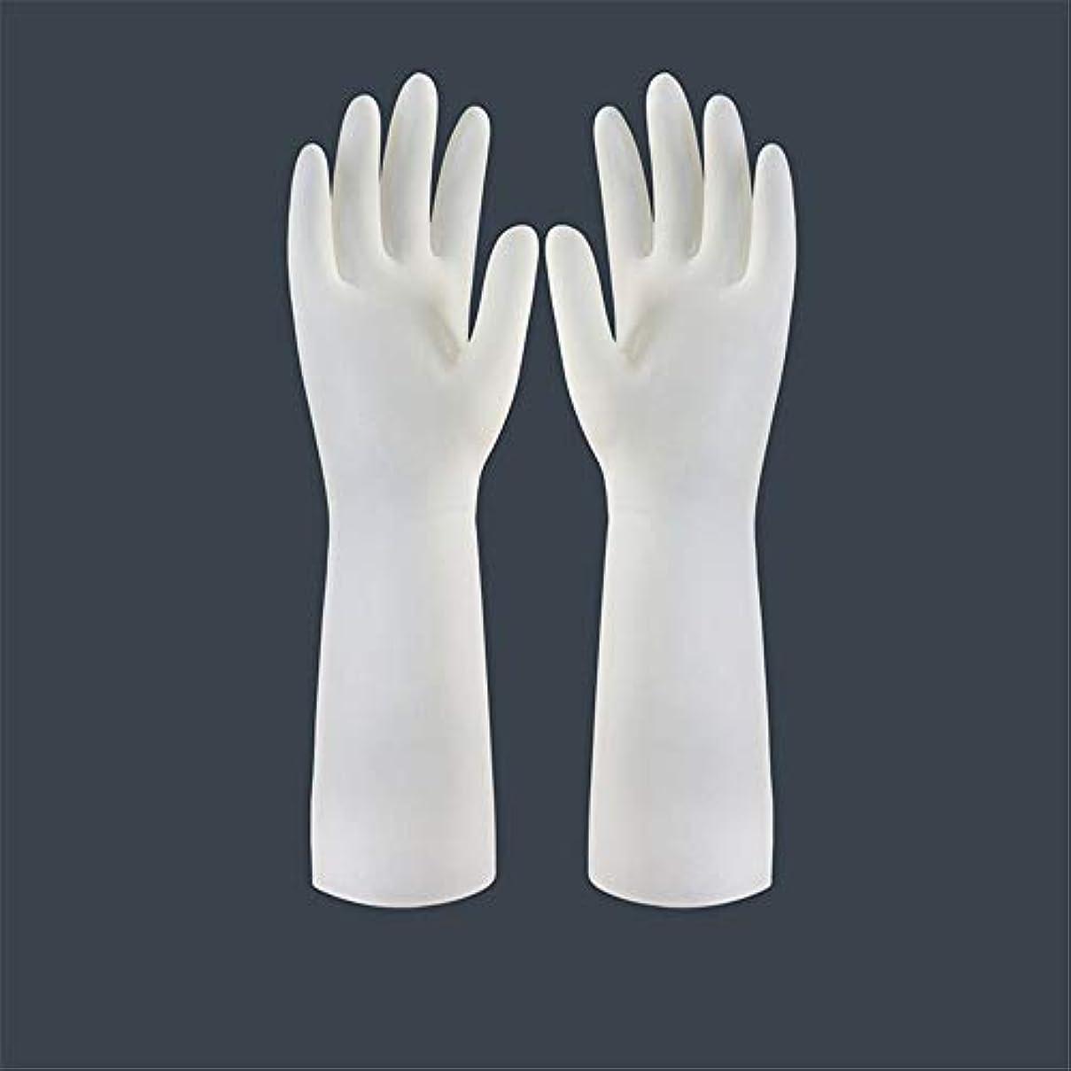 帳面計り知れない単語BTXXYJP キッチン用手袋 手袋 食器洗い 作業 炊事 食器洗い 掃除 園芸 洗車 防水 防油 手袋 (Color : Long-1 pair, Size : L)